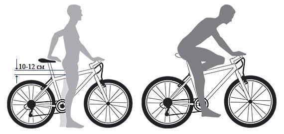Как подобрать велосипед по росту — интернет магазин велосипедов «ВелоГрад»